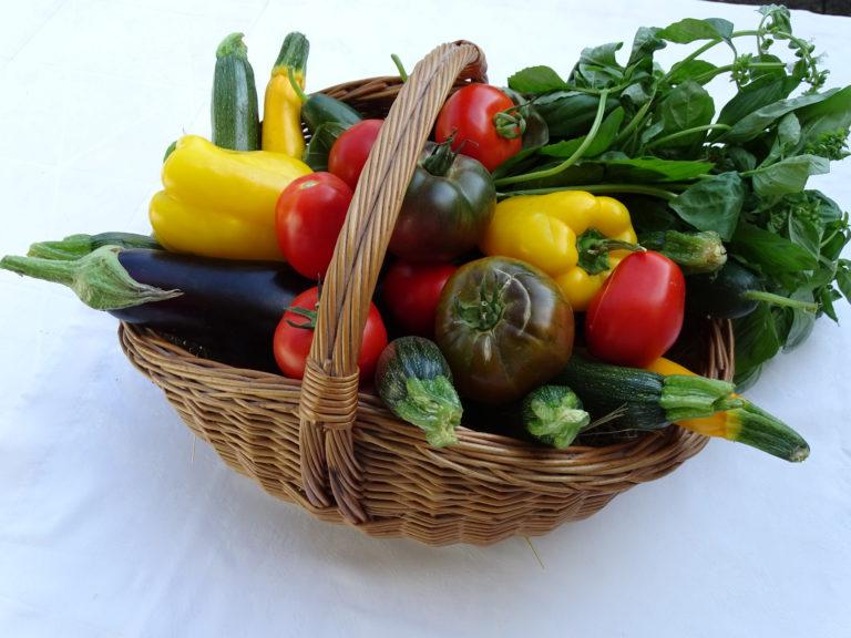 Les légumes du soleil